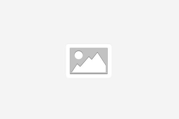 Polícia prende dois homens e um revóvler calibre 38 em São Mamede
